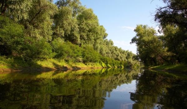 Oferte Delta Dunarii