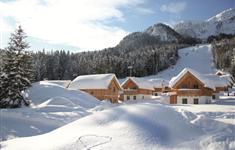 Alpenparks Hagan Lodge - Alpenparks Hagan Lodge