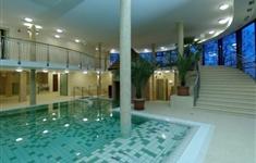 HOTEL WELLNESS GYULA   - HOTEL WELLNESS GYULA