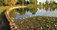Orosháza-Gyopárosfürdő (Ungaria)