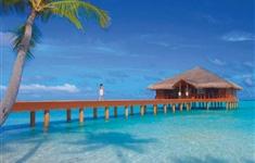 REVELION Maldive 2017 - REVELION Maldive 2017